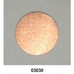 03030 - Disco de segurança